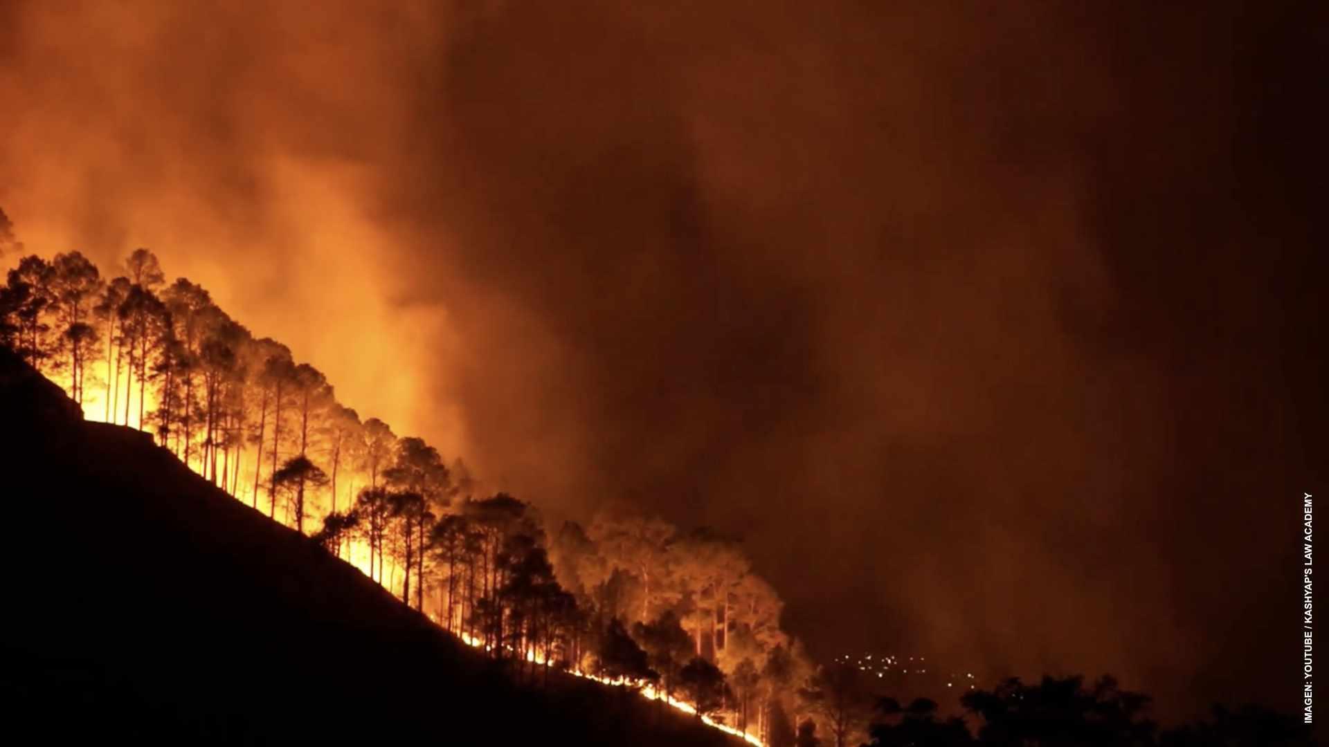 Incendios forestales no dan tregua en Columbia Británica