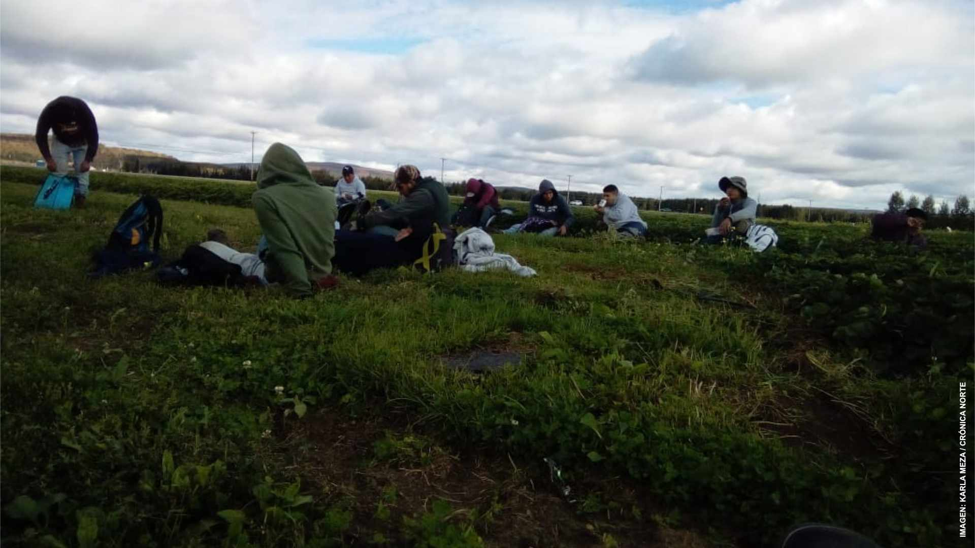 Trabajadores agrícolas extranjeros huyen de maltratos